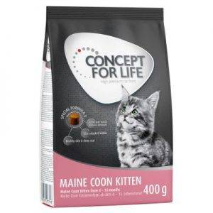 Concept for Life Maine Coon Kitten Kattenvoer - 10 kg