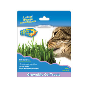 Cosmic Kitty Grass - 25 gram
