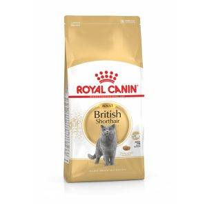 Royal Canin British Shorthair Adult - Kattenvoer - 4 kg