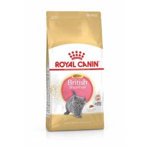 Royal Canin British Shorthair Kitten - Kattenvoer - 10 kg
