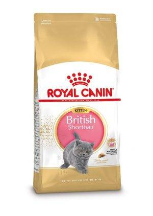 Royal Canin Kitten British Shorthair kattenvoer 2 kg